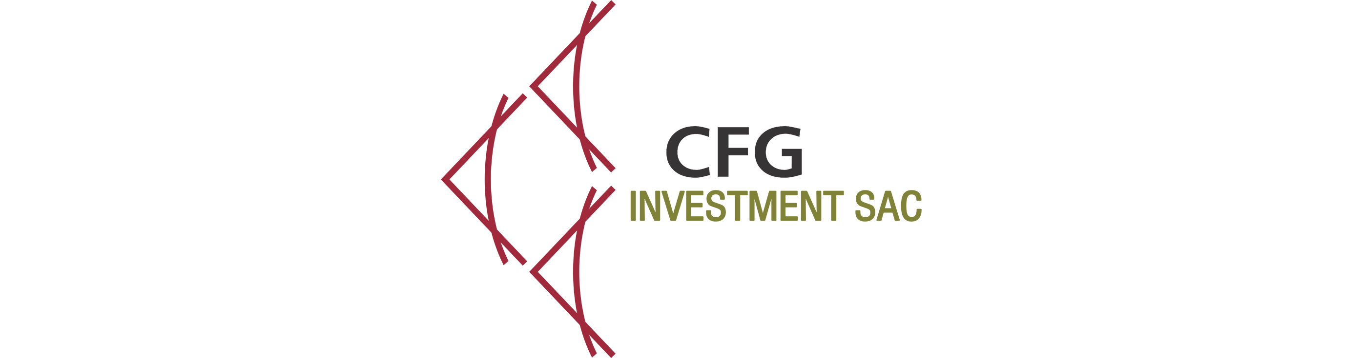 Cfg investment s.a.c andy bechtolsheim google investment